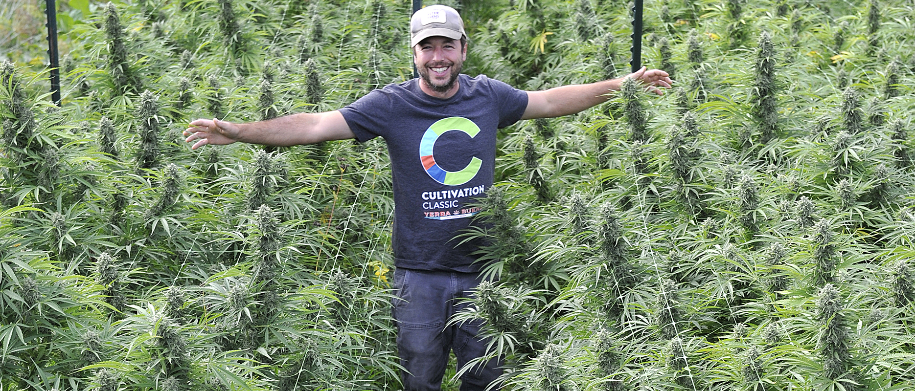 Science of growing champion bud